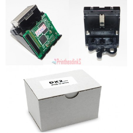 Epson DX2 head for Color 1520K
