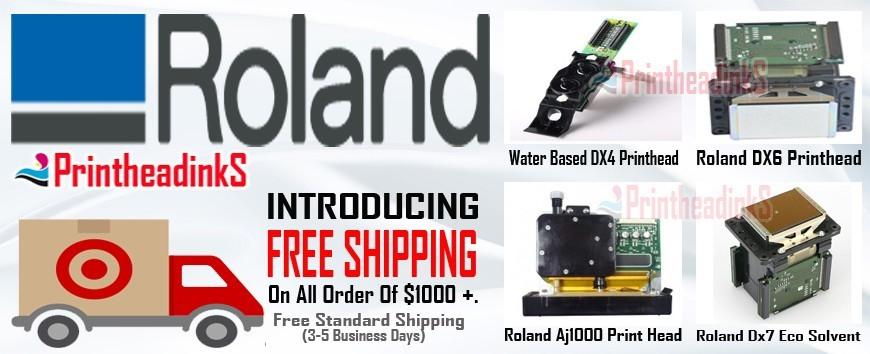 Roland Printhead